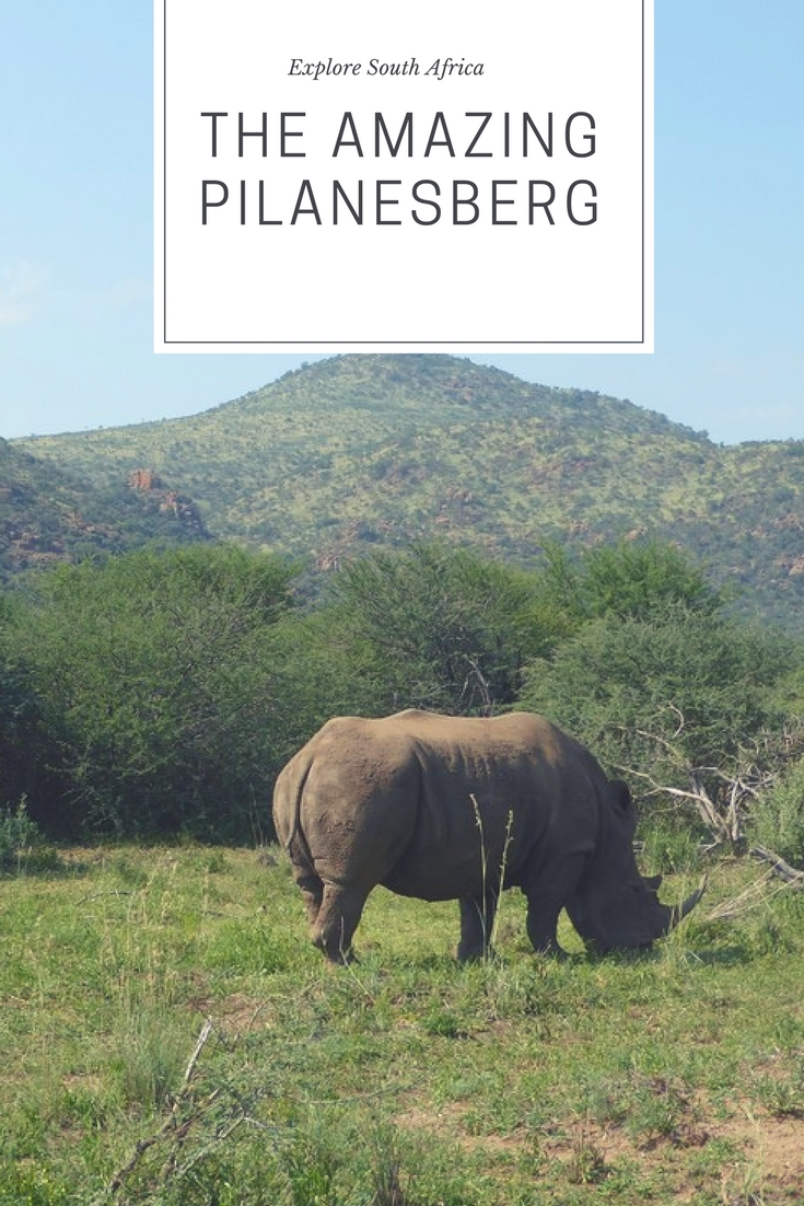 Pinterest_pilanesberg_safari