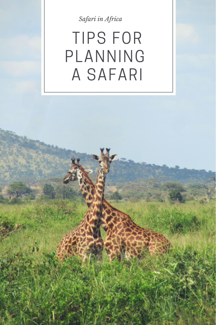 Pinterest_safari_planning
