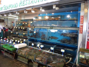 Fresh seafood in Sok Kwu Wan