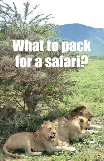 What to Pack for a Safari in Africa?