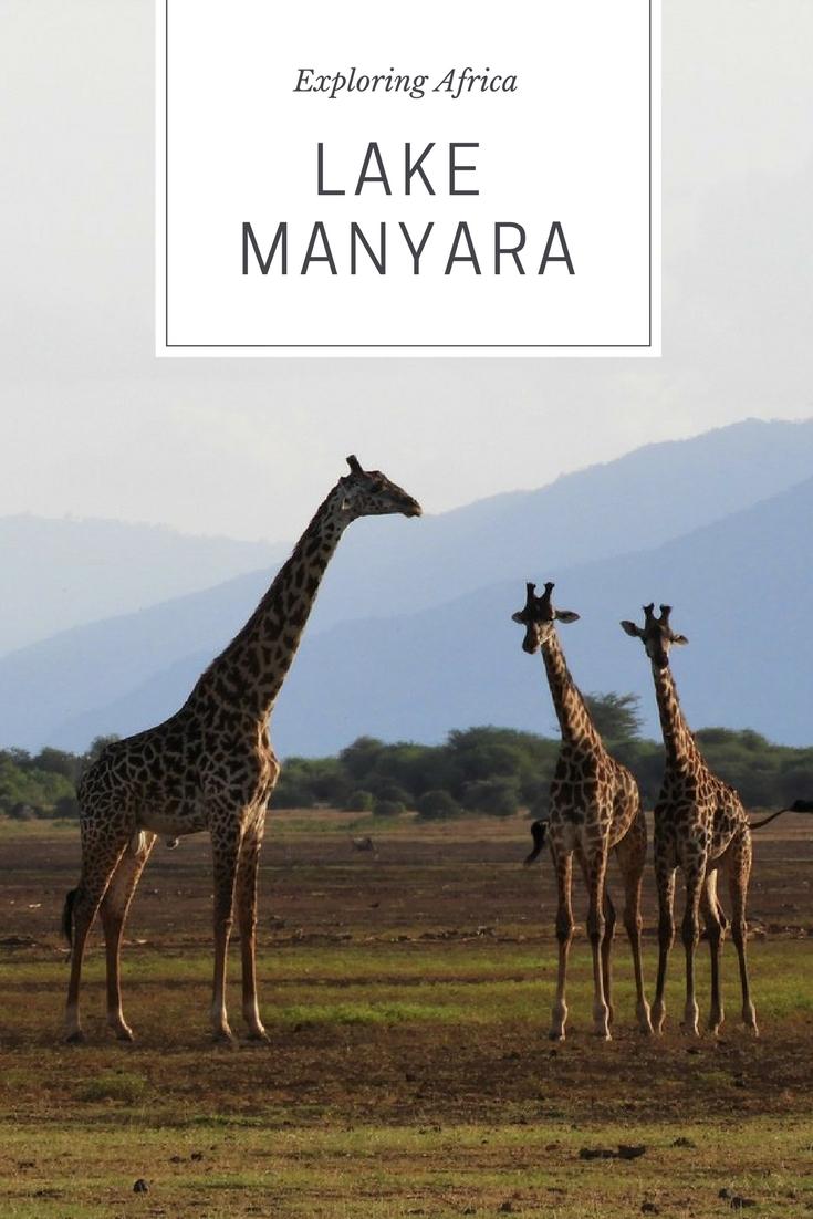 Safari at Lake Manyara, Tanzania