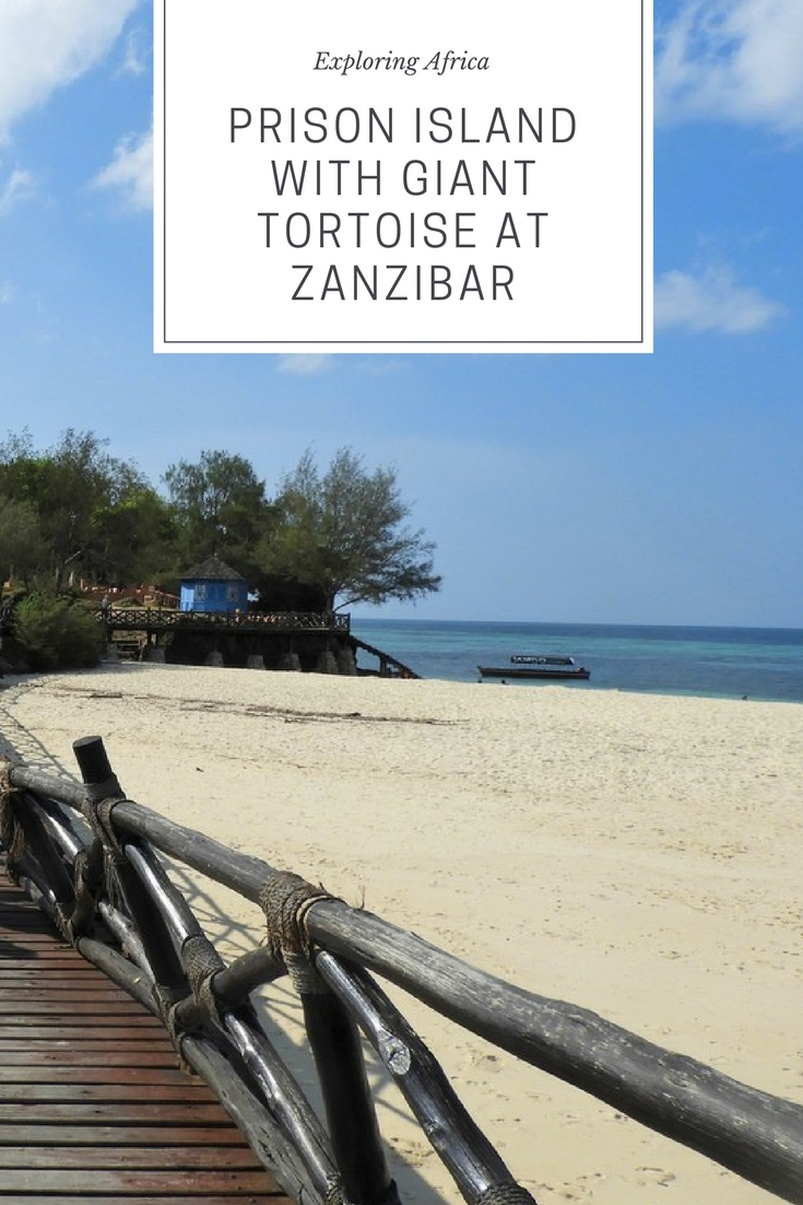 Prison Island and Giant Tortoise at Zanzibar