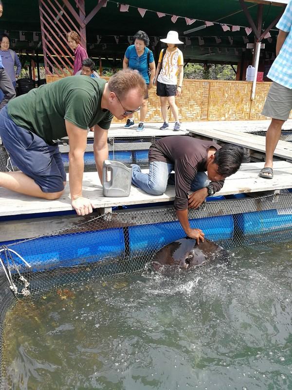 Kilim Geoforest park - Langkawi